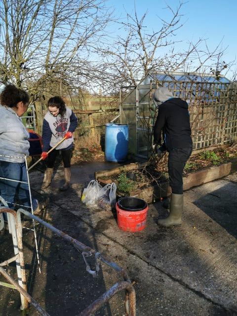 Veterans gardening at the Veteran Growth project