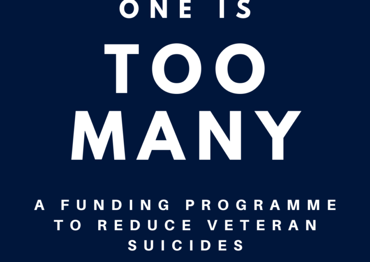 One is Too Many : A funding programme to reduce veteran sucides