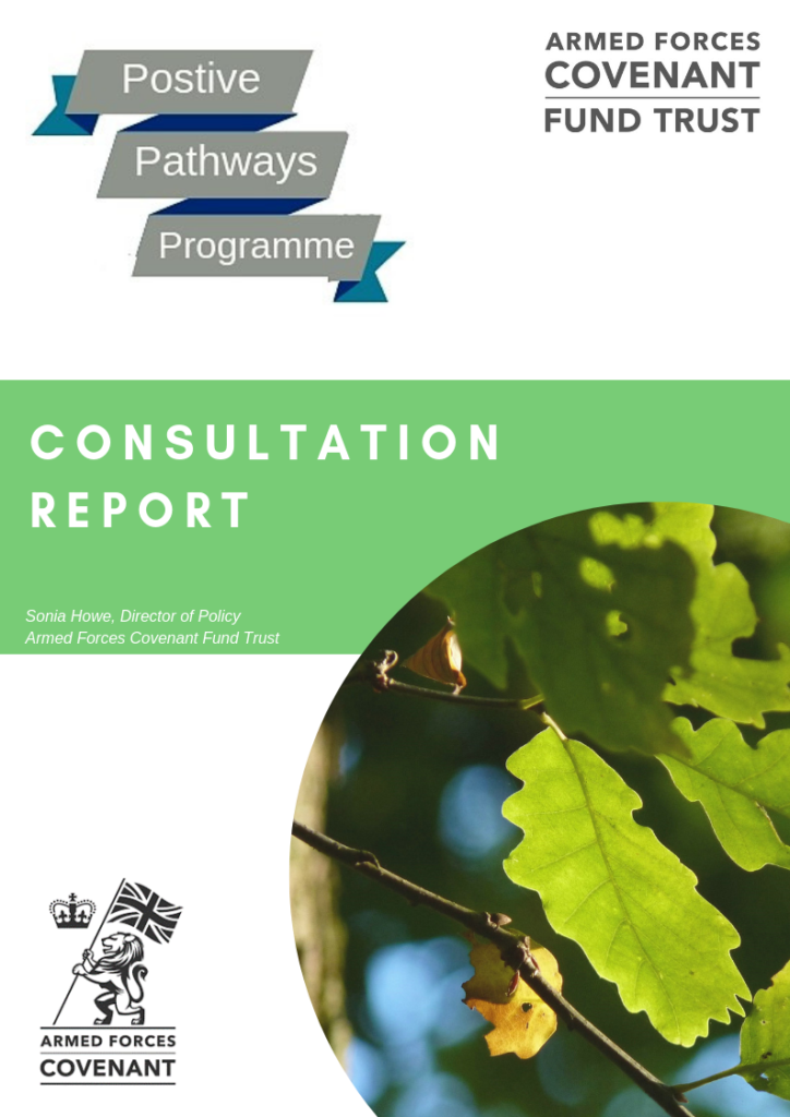 Front cover of Positive Pathways consultation report